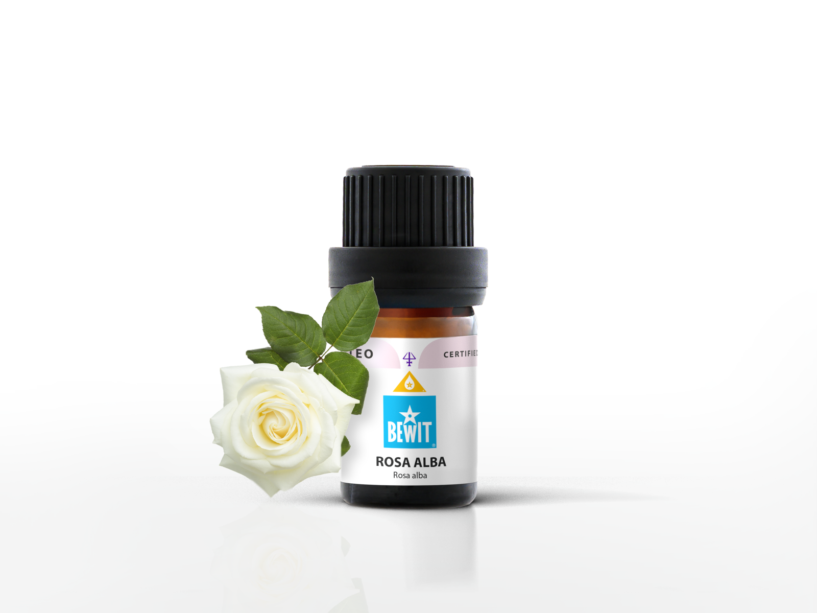 Rose alba in carrier oil