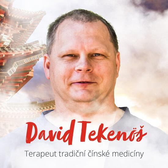 <span>David Tekenöš</span>